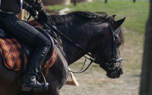 lesiones en la equitación