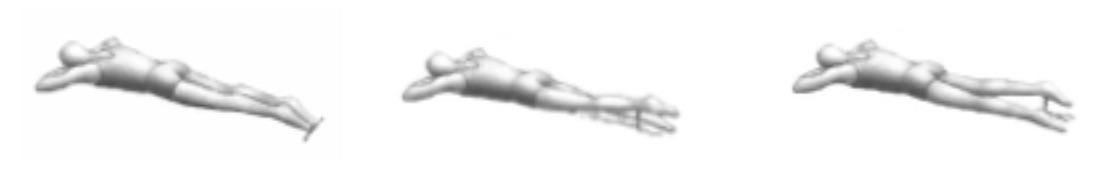 columna lumbar 8