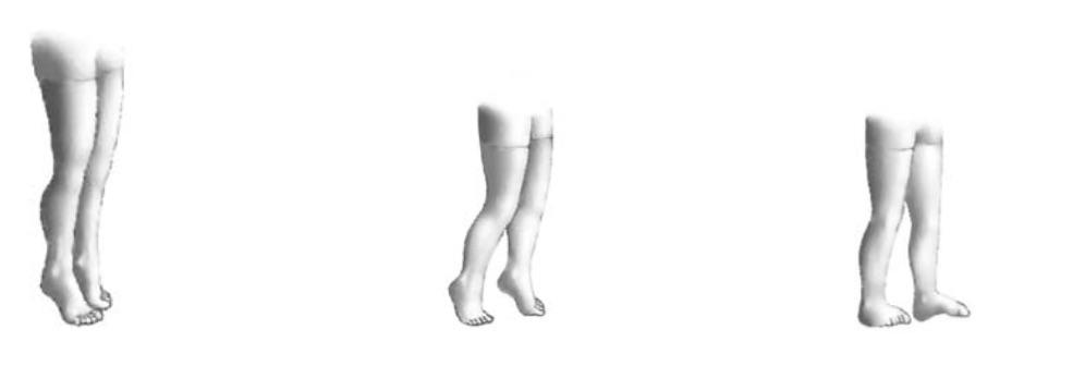 tobillo y pie 12