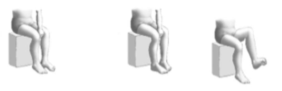 tobillo y pie 8