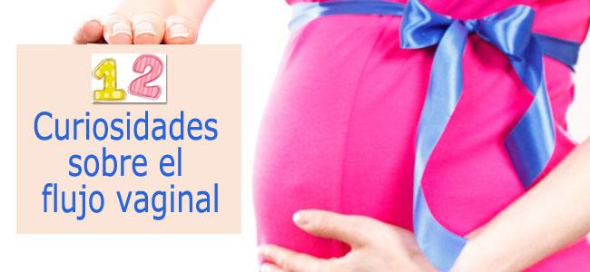 12 curisidades sobre el flujo vaginal
